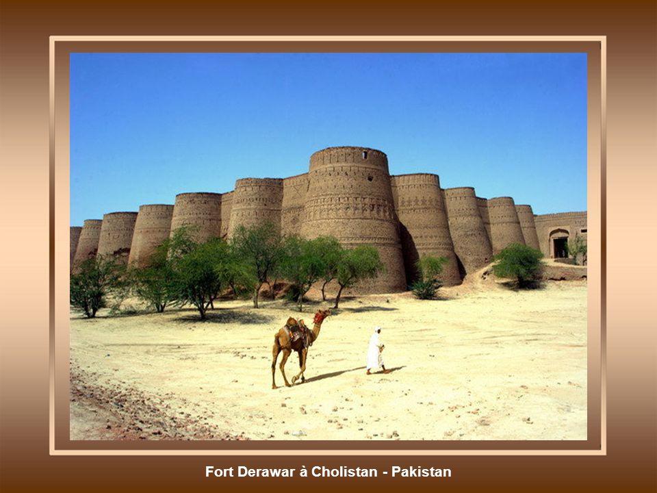 Fort Derawar à Cholistan - Pakistan