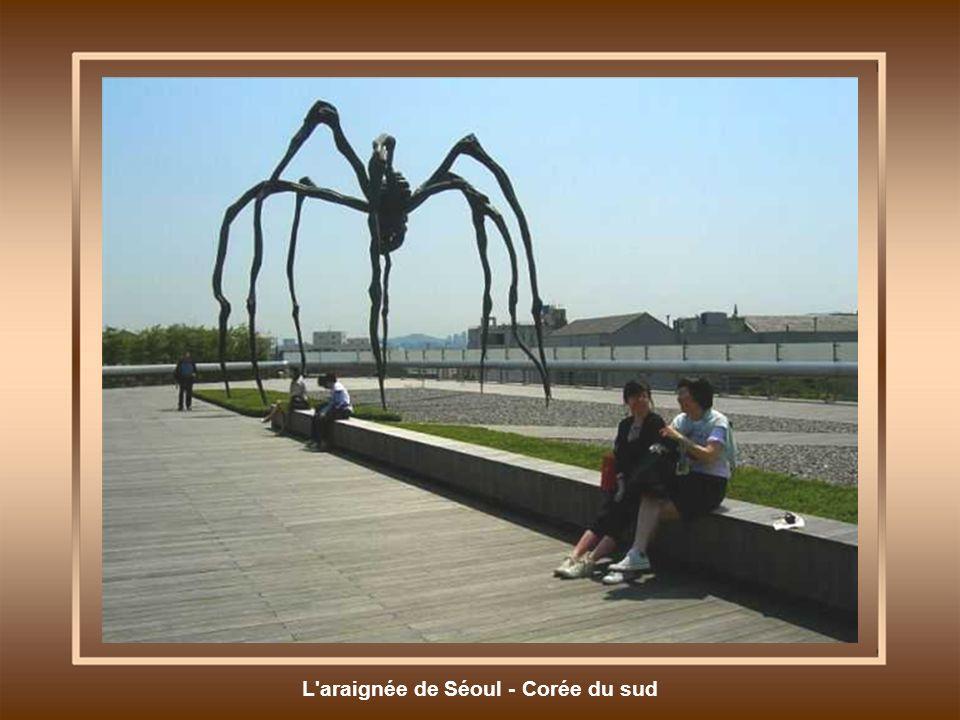 L araignée de Séoul - Corée du sud