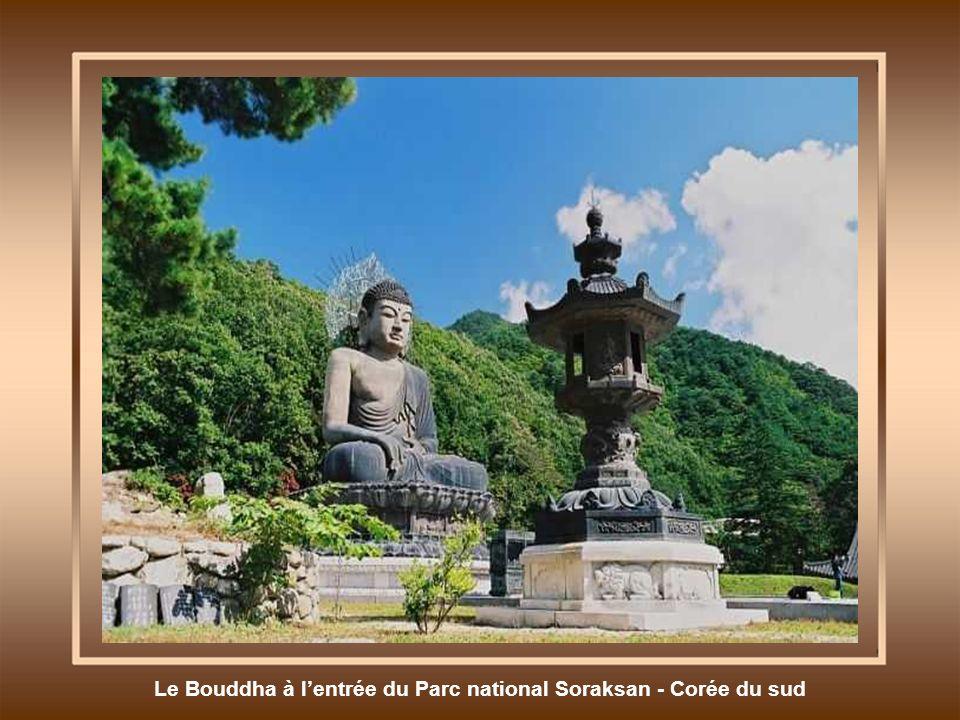Le Bouddha à l'entrée du Parc national Soraksan - Corée du sud