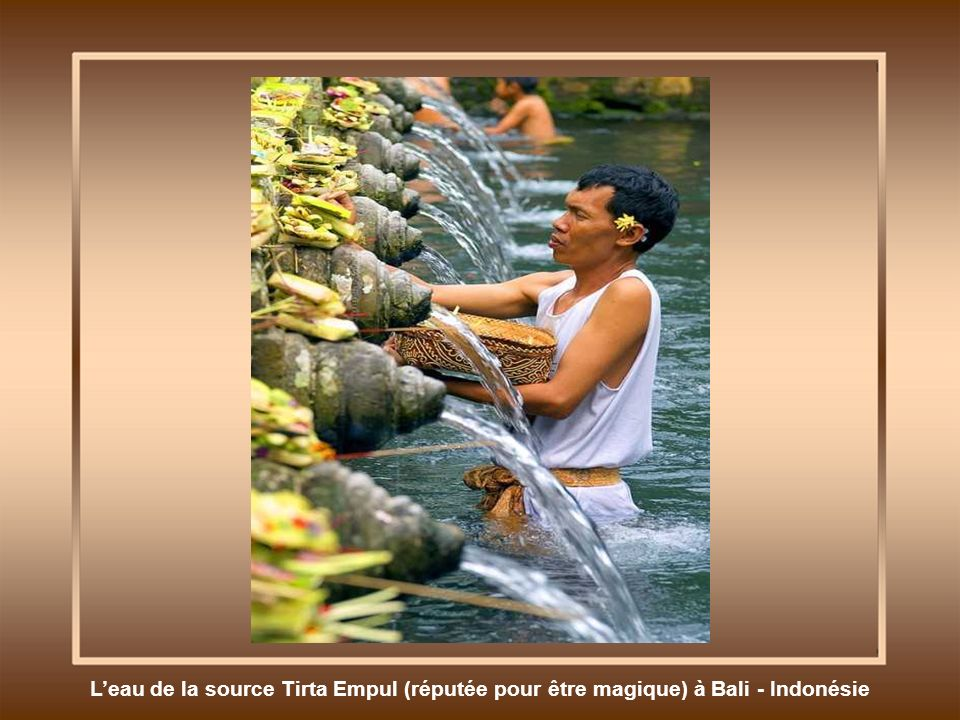 L'eau de la source Tirta Empul (réputée pour être magique) à Bali - Indonésie