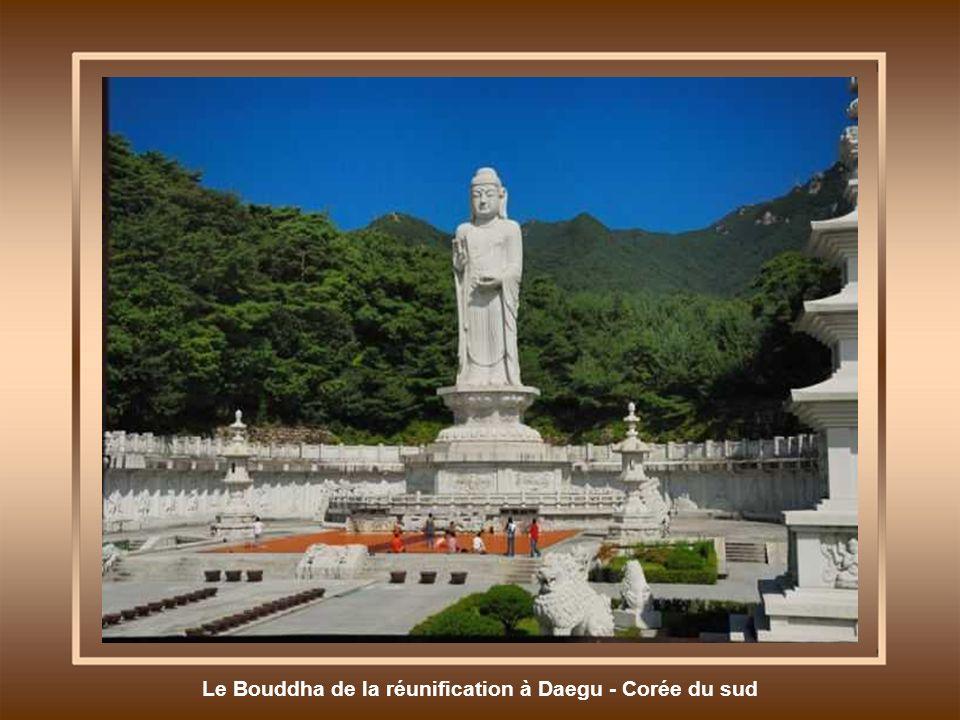 Le Bouddha de la réunification à Daegu - Corée du sud