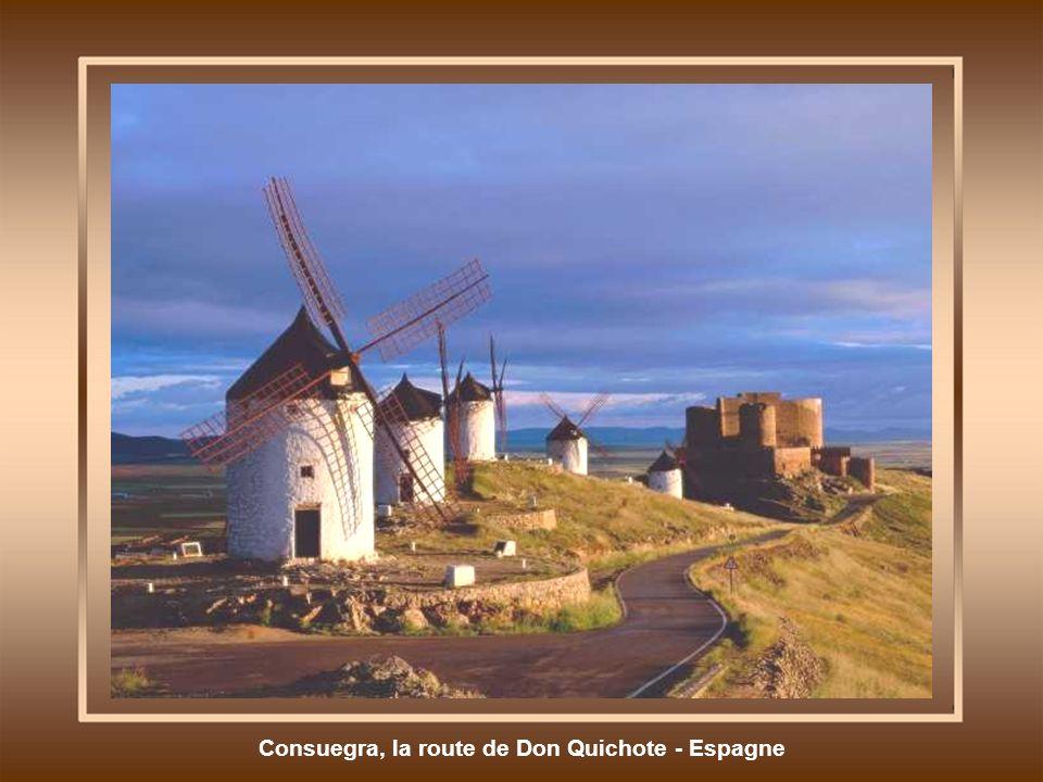 Consuegra, la route de Don Quichote - Espagne