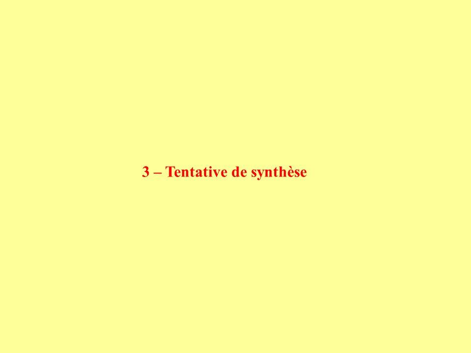 3 – Tentative de synthèse