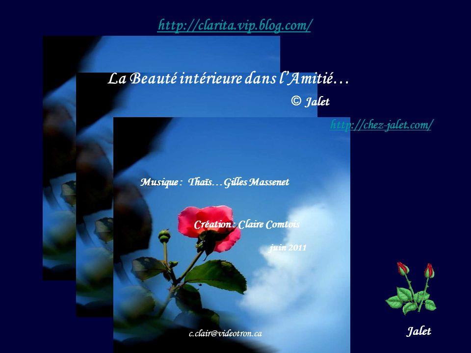 Création : Claire Comtois