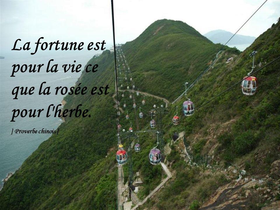 La fortune est pour la vie ce que la rosée est pour l herbe.
