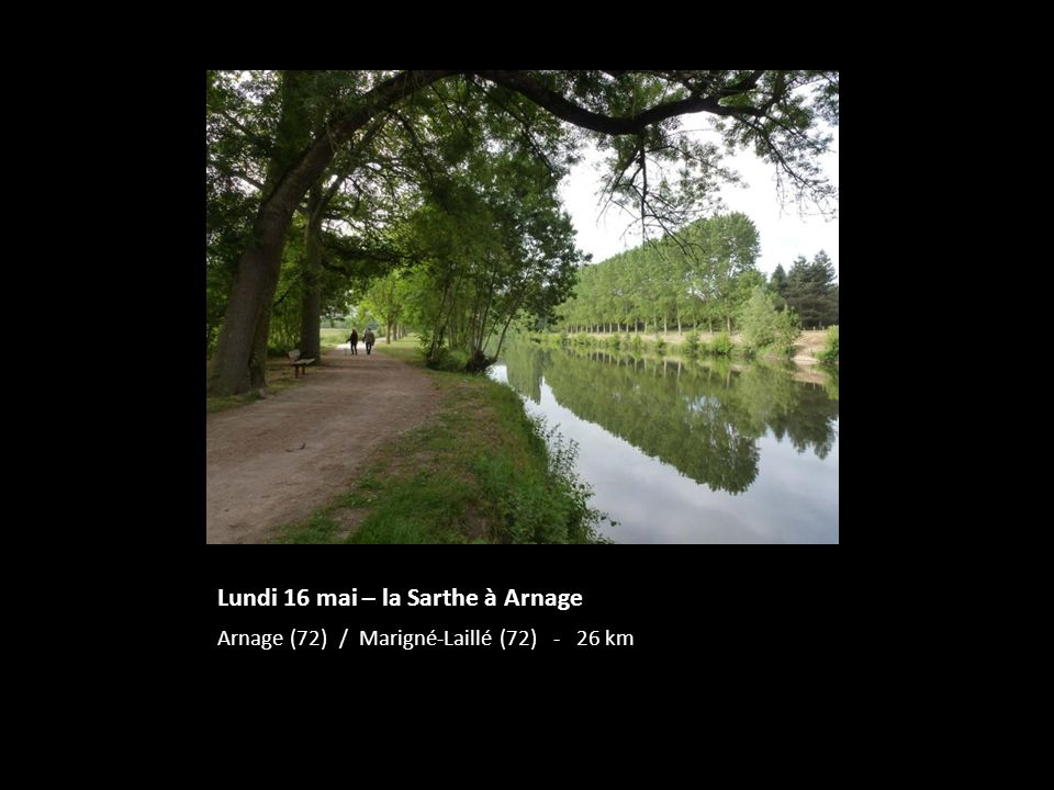 Lundi 16 mai – la Sarthe à Arnage