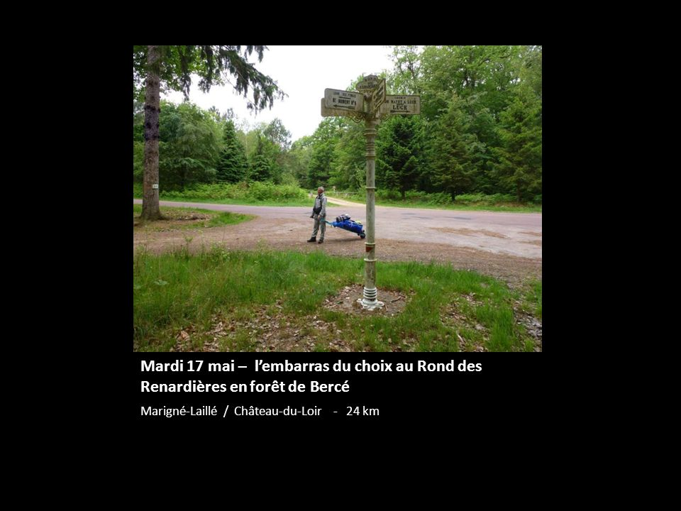 Mardi 17 mai – l'embarras du choix au Rond des Renardières en forêt de Bercé