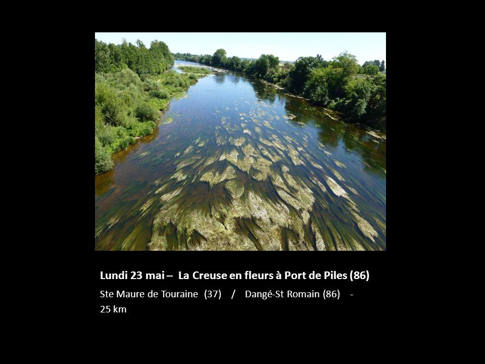 Lundi 23 mai – La Creuse en fleurs à Port de Piles (86)