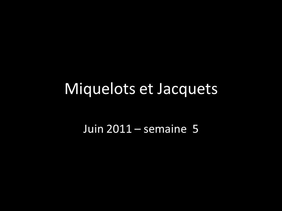 Miquelots et Jacquets Juin 2011 – semaine 5 33