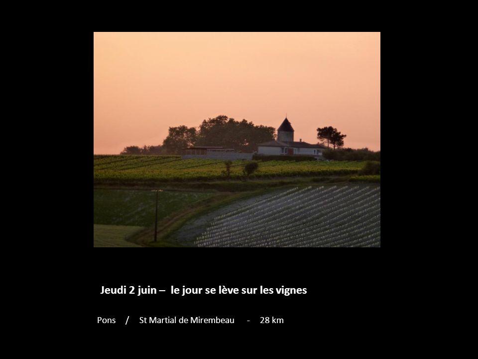 Jeudi 2 juin – le jour se lève sur les vignes