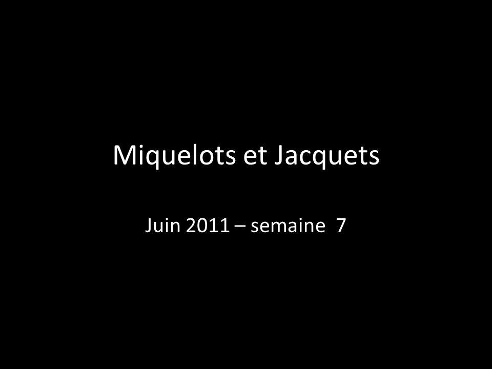 Miquelots et Jacquets Juin 2011 – semaine 7 49