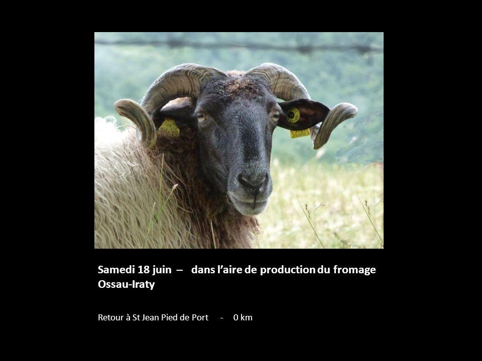 Samedi 18 juin – dans l'aire de production du fromage Ossau-Iraty