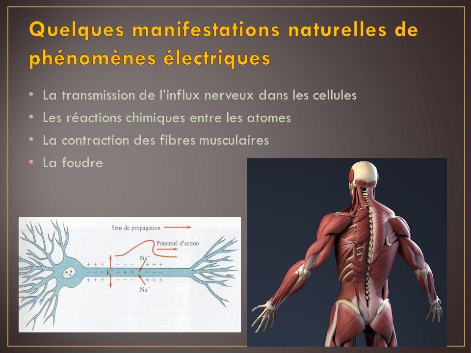 Quelques manifestations naturelles de phénomènes électriques