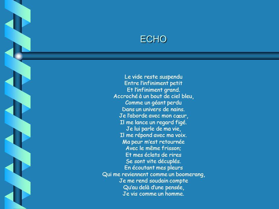 ECHO Le vide reste suspendu Entre l'infiniment petit