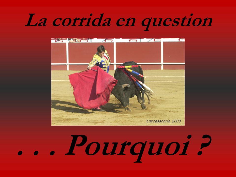 La corrida en question Carcassonne, 2003 . . . Pourquoi