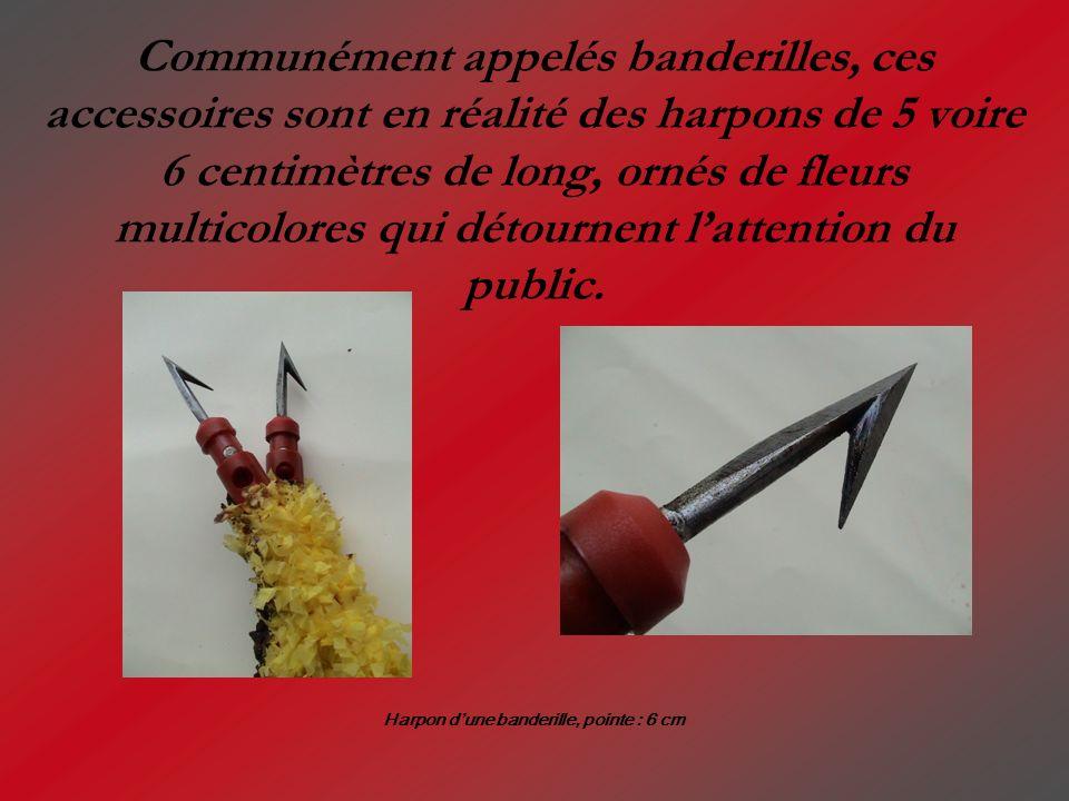 Harpon d'une banderille, pointe : 6 cm