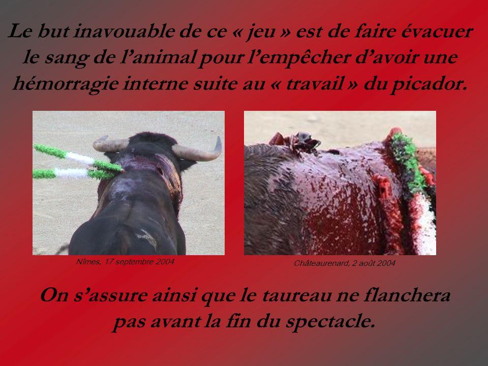 Le but inavouable de ce « jeu » est de faire évacuer le sang de l'animal pour l'empêcher d'avoir une hémorragie interne suite au « travail » du picador.