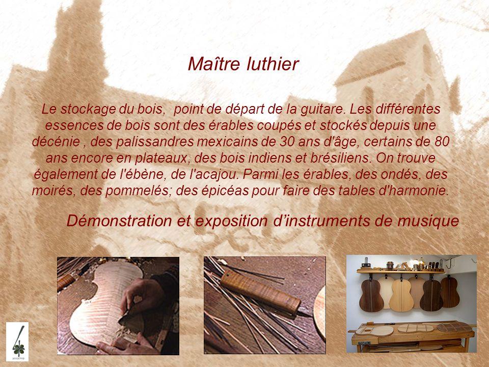 Maître luthier Démonstration et exposition d'instruments de musique