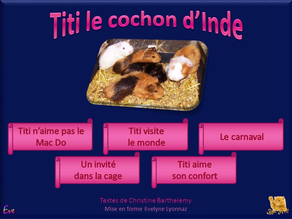 Titi le cochon d'Inde choix Titi n'aime pas le Mac Do Titi visite