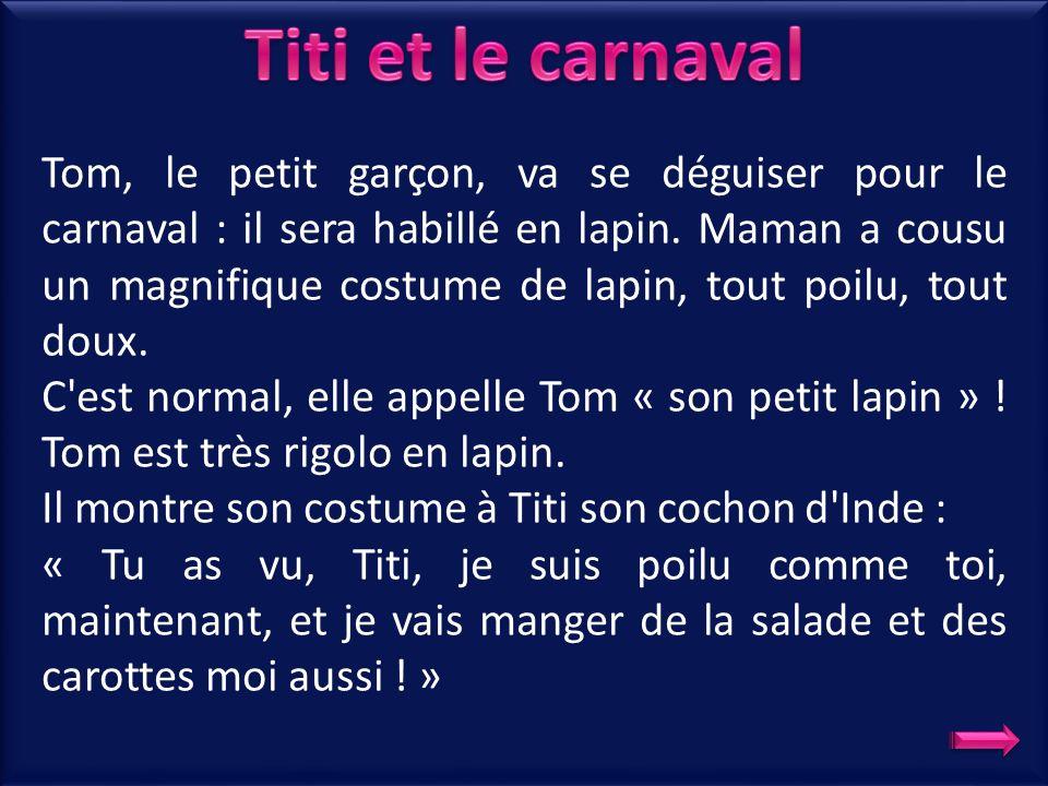 Tom, le petit garçon, va se déguiser pour le carnaval : il sera habillé en lapin. Maman a cousu un magnifique costume de lapin, tout poilu, tout doux.