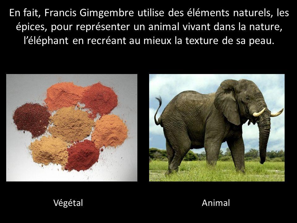 En fait, Francis Gimgembre utilise des éléments naturels, les épices, pour représenter un animal vivant dans la nature, l'éléphant en recréant au mieux la texture de sa peau.