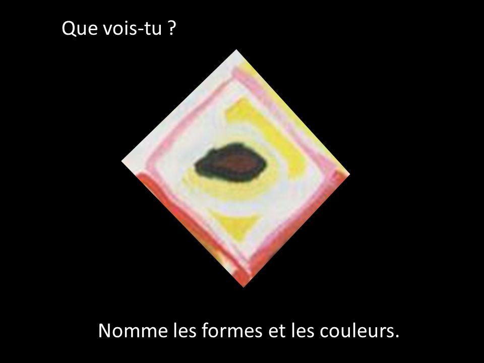 Que vois-tu Nomme les formes et les couleurs.