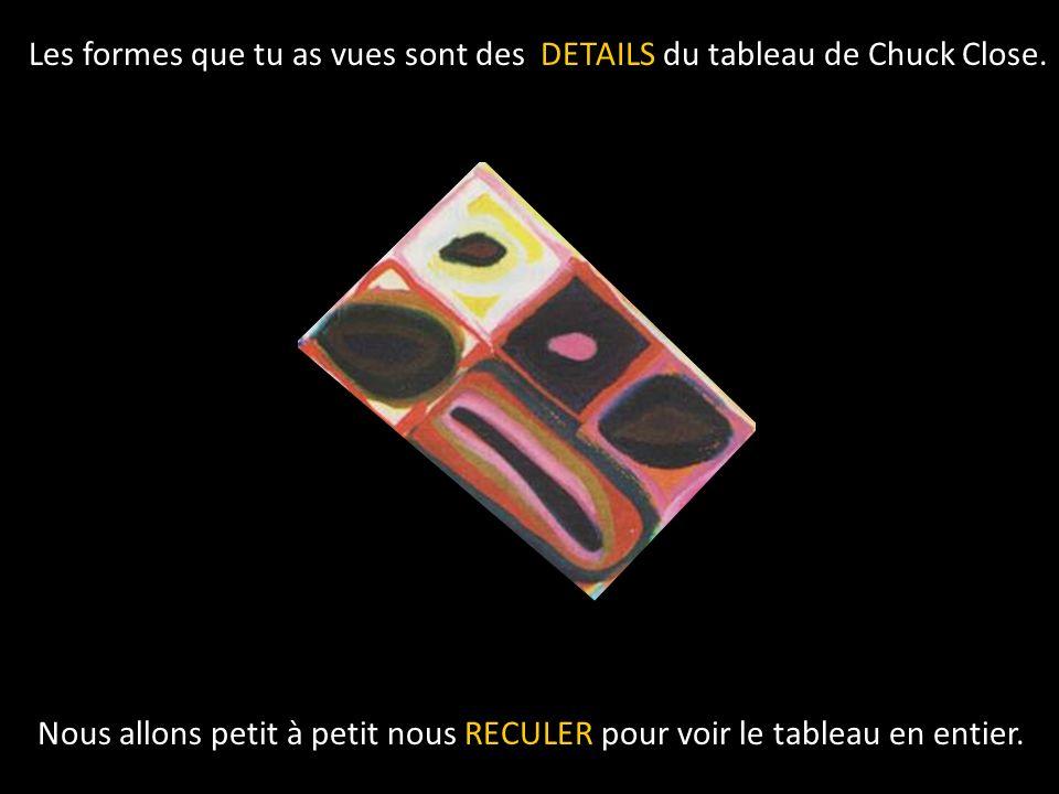 Les formes que tu as vues sont des DETAILS du tableau de Chuck Close.