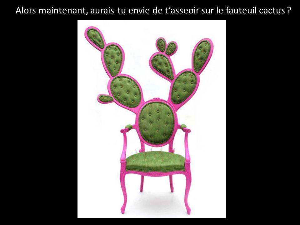 Alors maintenant, aurais-tu envie de t'asseoir sur le fauteuil cactus