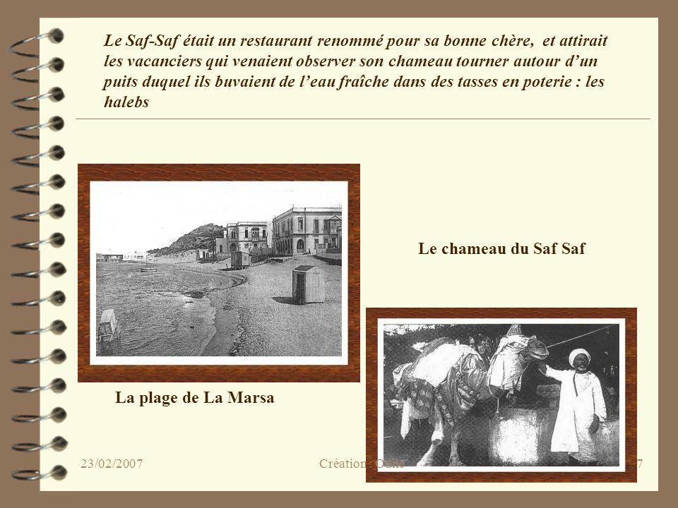 Le chameau du Saf Saf La plage de La Marsa