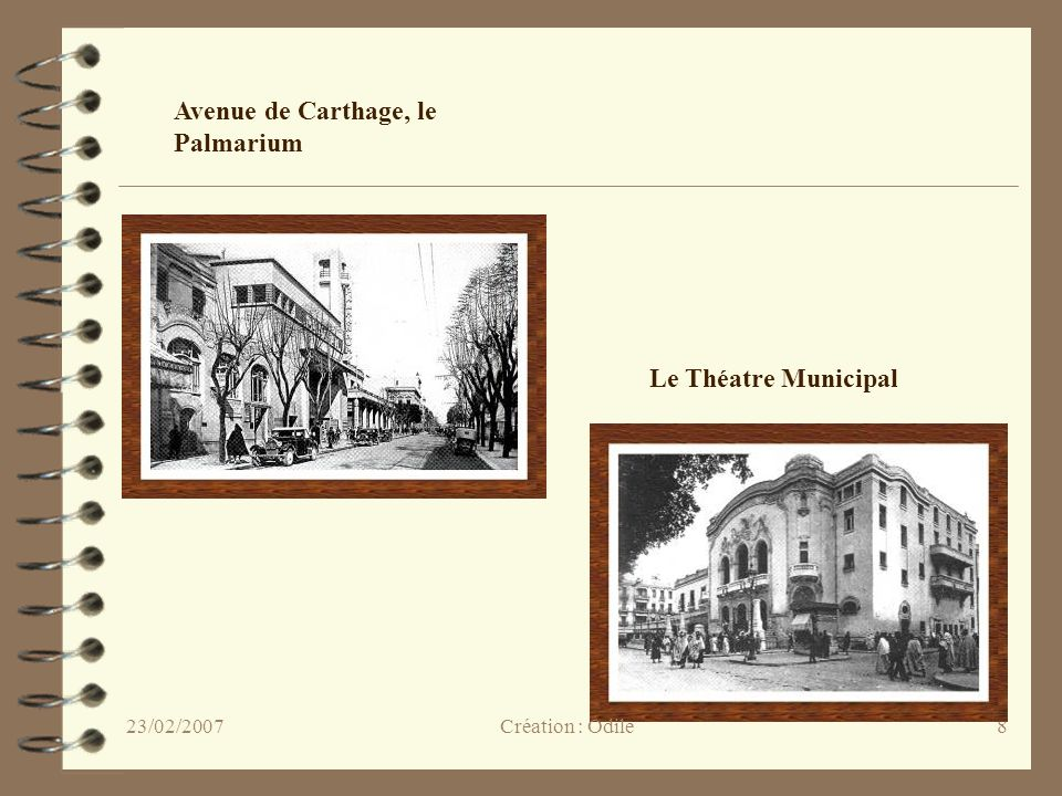 Avenue de Carthage, le Palmarium