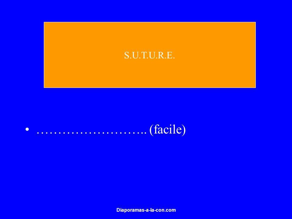 S.U.T.U.R.E. …………………….. (facile) Diaporamas-a-la-con.com