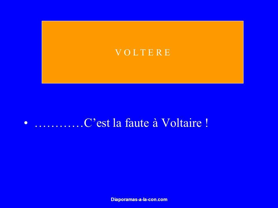 …………C'est la faute à Voltaire !