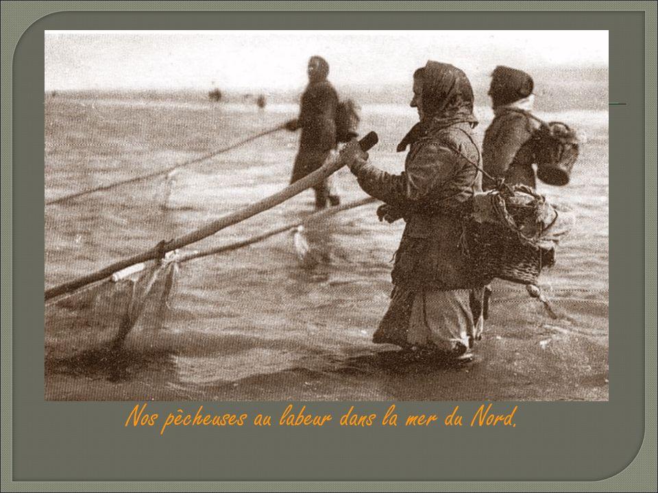 Nos pêcheuses au labeur dans la mer du Nord.
