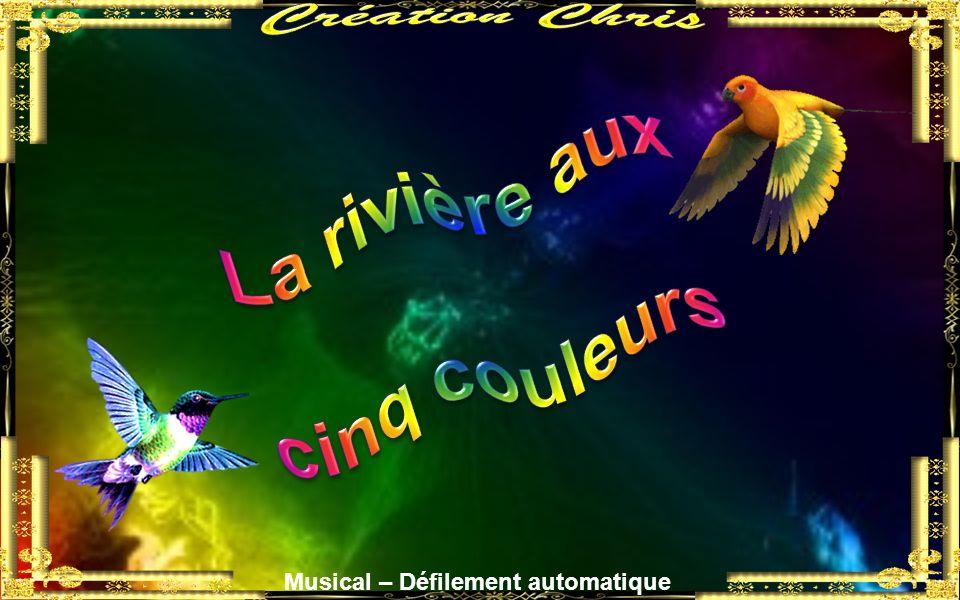 Création Chris La rivière aux cinq couleurs