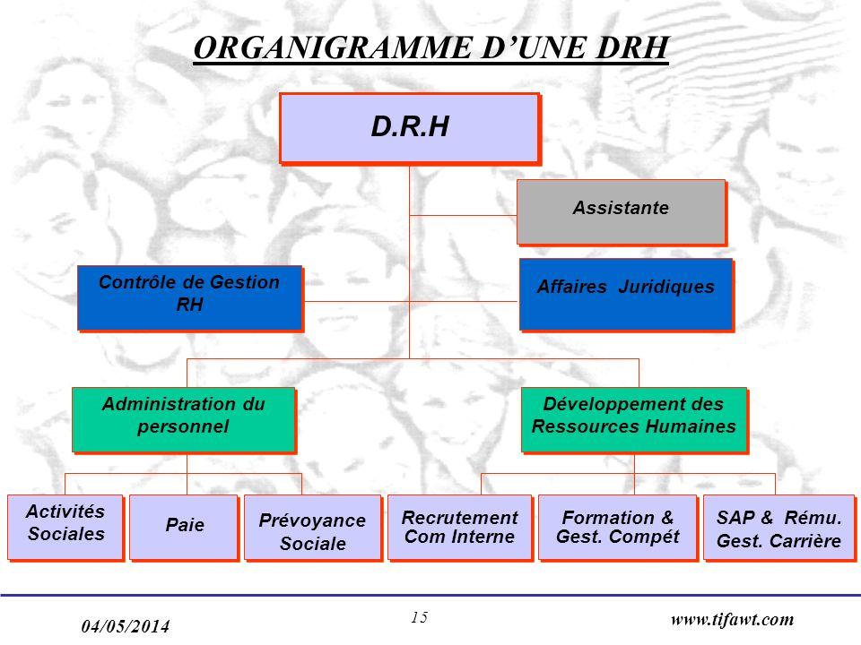 ORGANIGRAMME D'UNE DRH