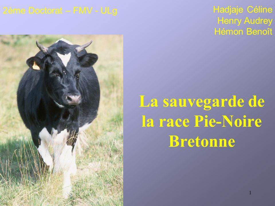 La sauvegarde de la race Pie-Noire Bretonne