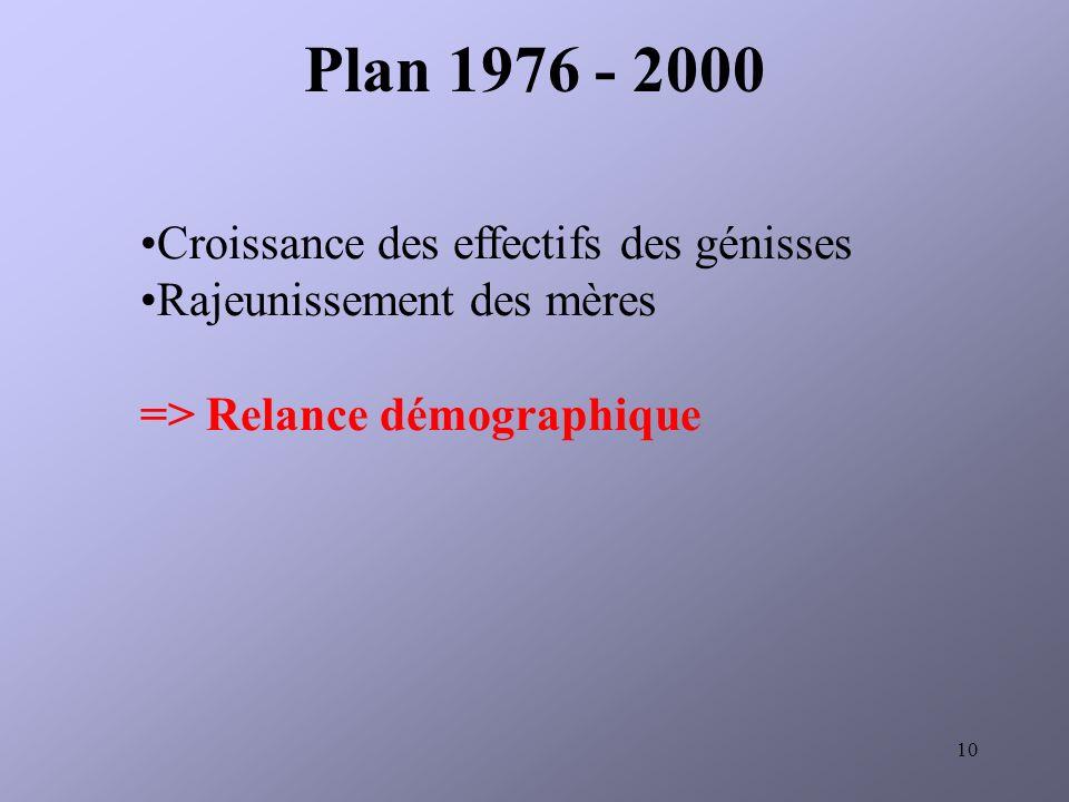 Plan 1976 - 2000 Croissance des effectifs des génisses