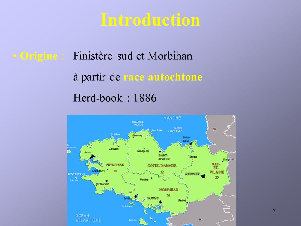 Introduction Origine : Finistère sud et Morbihan