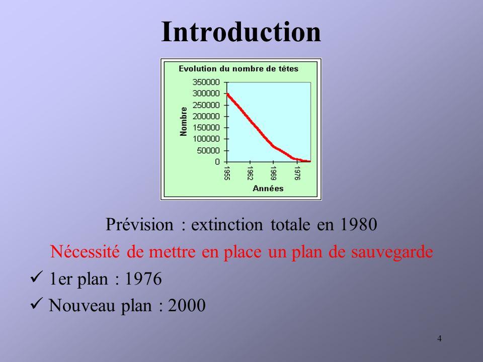 Introduction Prévision : extinction totale en 1980