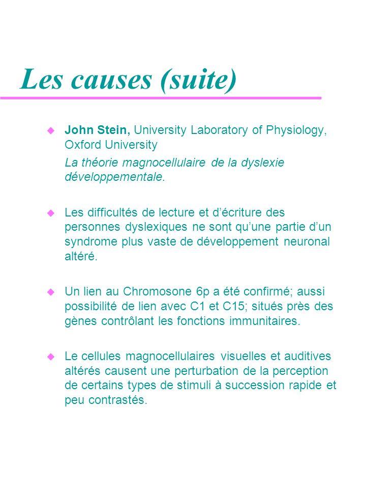 Les causes (suite) John Stein, University Laboratory of Physiology, Oxford University. La théorie magnocellulaire de la dyslexie développementale.