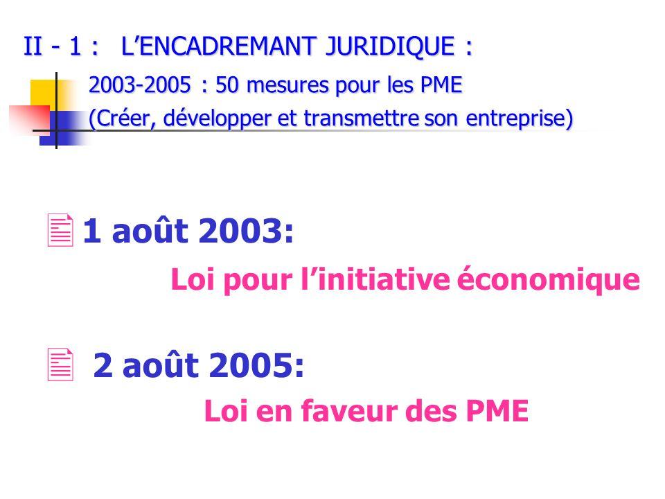 Loi pour l'initiative économique