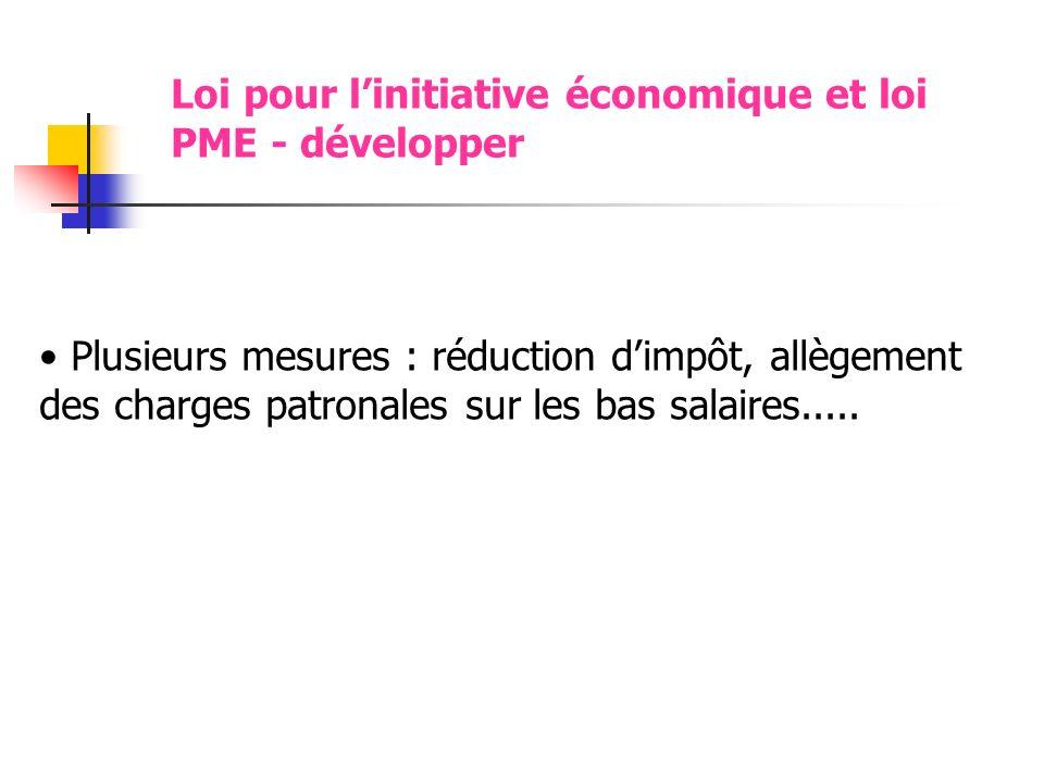 Loi pour l'initiative économique et loi PME - développer