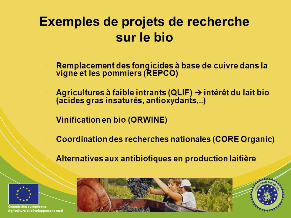 Exemples de projets de recherche sur le bio