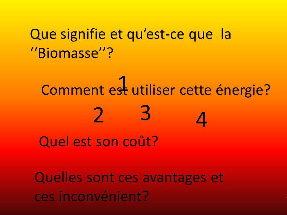 1 3 2 4 Que signifie et qu'est-ce que la ''Biomasse''