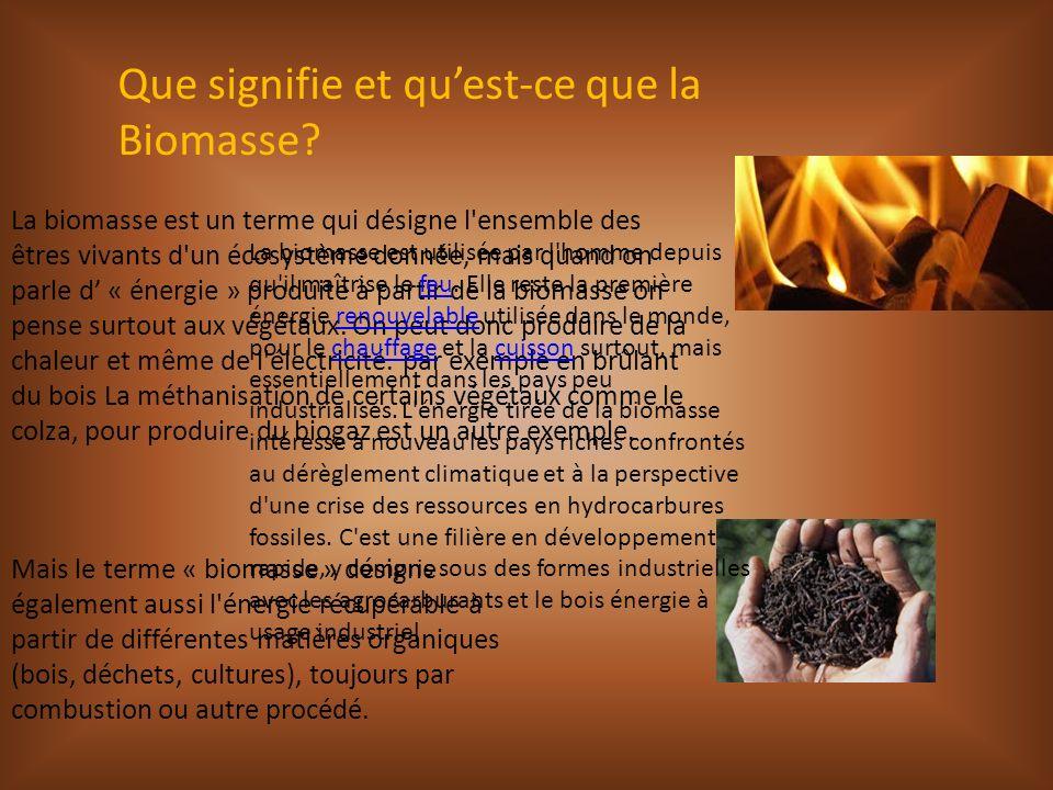 Que signifie et qu'est-ce que la Biomasse
