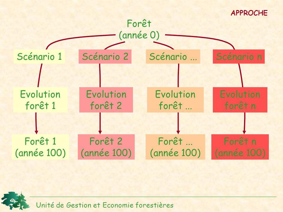 Forêt (année 0) Evolution forêt 1 Scénario 1 Forêt 1 (année 100)
