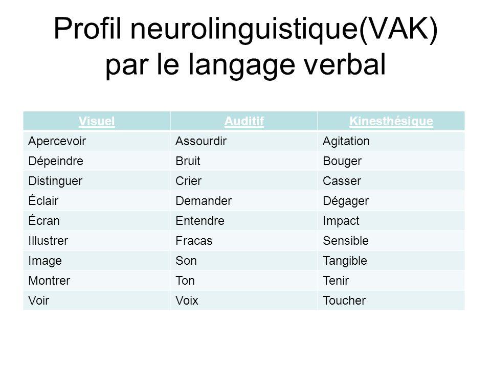 Profil neurolinguistique(VAK) par le langage verbal