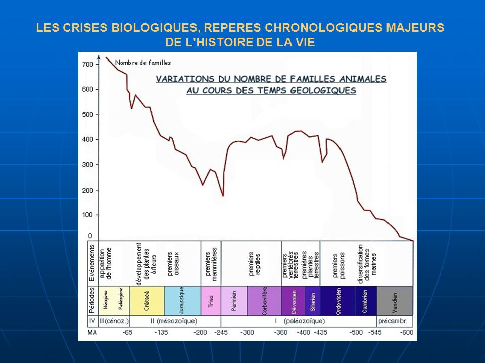 LES CRISES BIOLOGIQUES, REPERES CHRONOLOGIQUES MAJEURS DE L HISTOIRE DE LA VIE