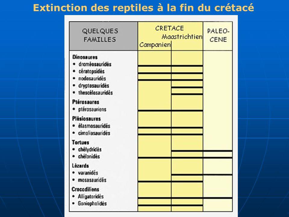 Extinction des reptiles à la fin du crétacé