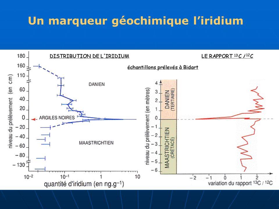 Un marqueur géochimique l'iridium